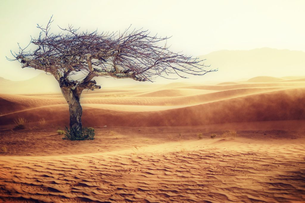 desert 2227962 1920